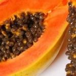 frutas tropicales con mucho sabor!