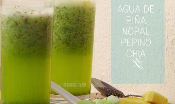 agua de pepino, nopal, piña y chia